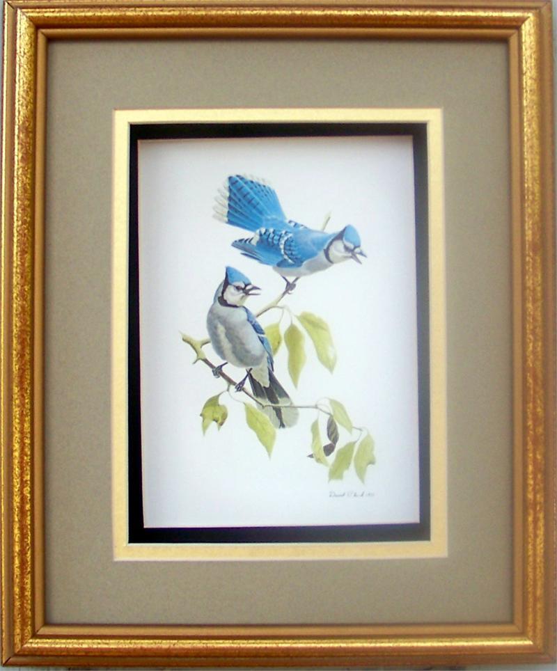 Blue Jay Birds Paper Tole 3D Kit 8x10