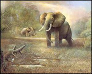 Ruane Manning Elephant Prints Best 2018