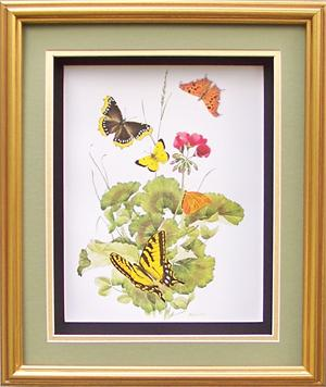 Shadow Box Frame Gold 10x12 For 8x10 Pictures 9172