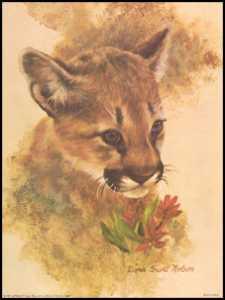 Tiger Cub I Paper Tole 3D Kit size 6x8 10568